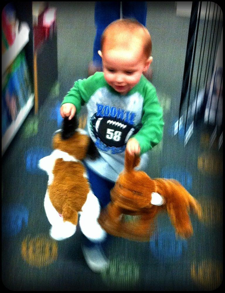 Daniel and his Dawgs