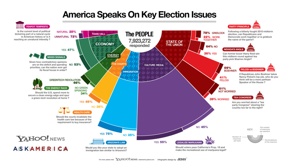 10 Questions, 8 Million Respondents, 1 Giant Election Infographic