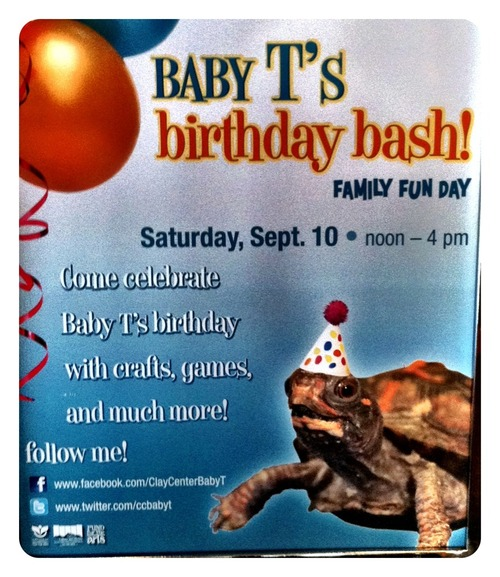 Baby Turtle Birthday Party at Clay Center