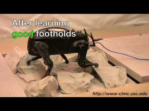 Amazing and Freaky Video of 'LittleDog' Robot