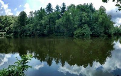 Pano Pic of Pettigrew Lake