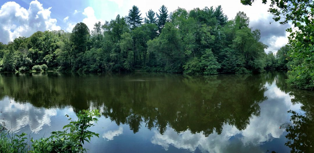 Pano Pic of Pettigrew Lake